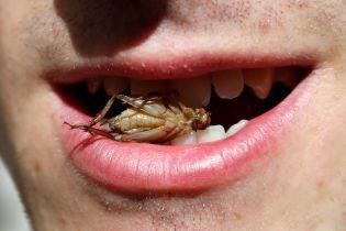 Хот-дог, сырые осьминоги и моллюски. Десять самых опасных продуктов планеты в одной картинке
