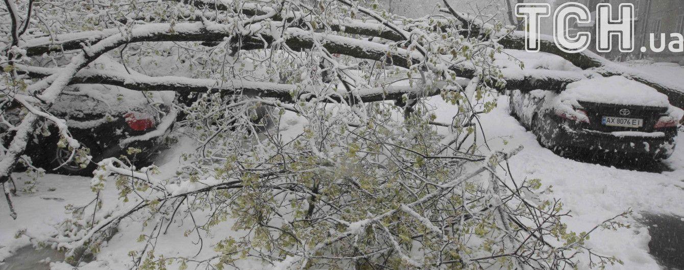 Атака снігової негоди: понад 200 населених пунктів залишаються без світла