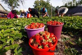 Чехія дозволила легально працювати вдвічі більшій кількості заробітчан з України