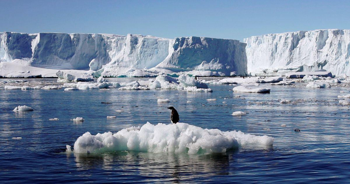 Учені нажахані різким збільшенням тріщини в льоді Антарктиди