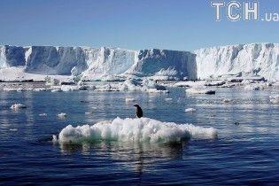 Ученые напуганы резким увеличением трещины во льду Антарктиды