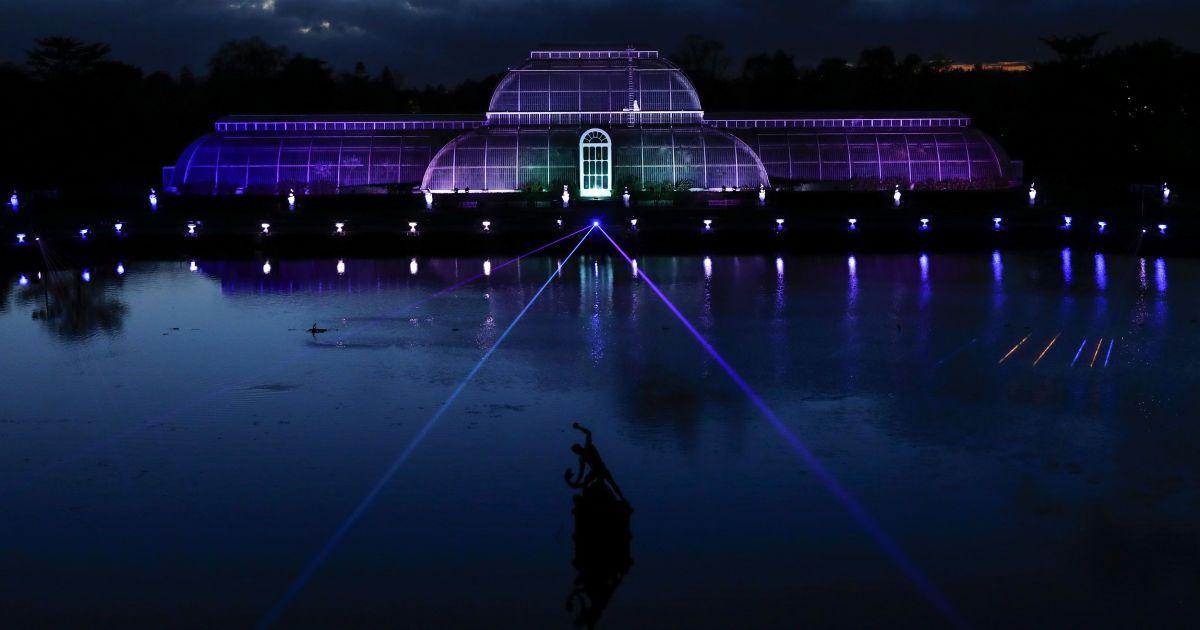 Світлова інсталяція на Пальмовому будинку у Кью-Гарденс у західній частині Лондона, Великобританія.  Щорічна різдвяна інсталяція у Королівських ботанічних садах буде відкрита із середи, 23 листопада, до 2 січня 2017 року. @ Reuters