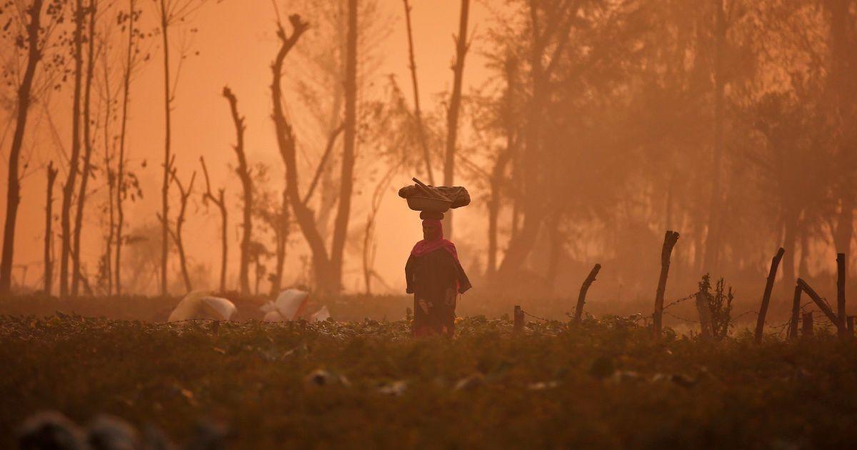 Жінка несе кошик на голові через поле овочів під час туманного ранку на околиці Срінагара. @ Reuters
