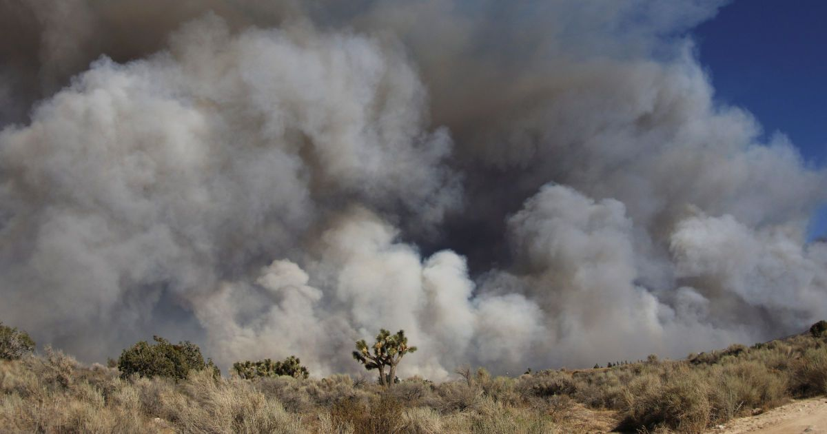 Лісові пожежі у Каліфорнії @ Reuters