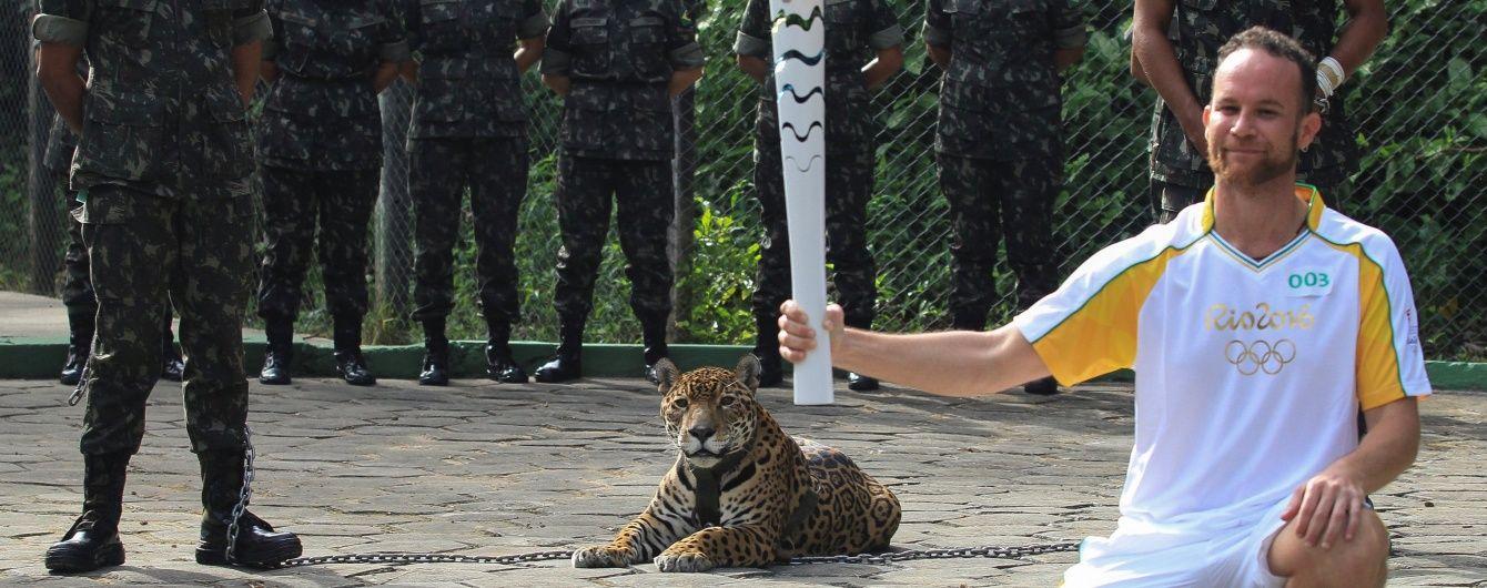 У Бразилії застрелили ягуара-символ Олімпіади