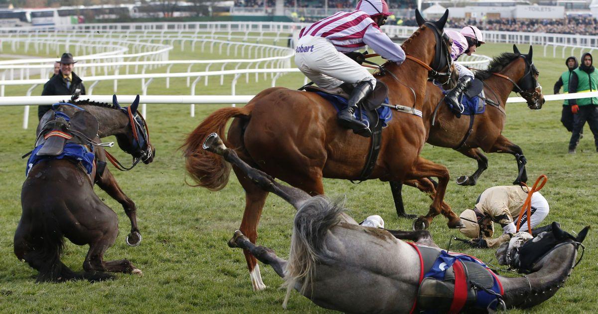 Учасники скачок в англійському Челтенхемі падають зі своїх коней. @ Reuters