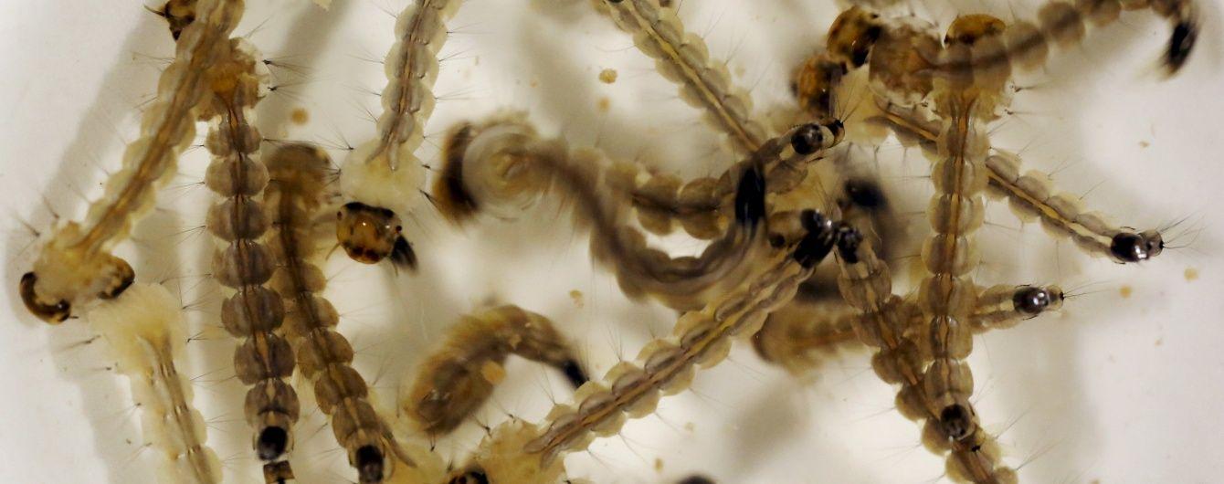 Учені підтвердили зв'язок між вірусом Зіка і рідкісним захворюванням
