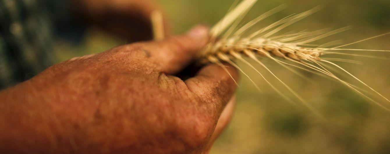 """Рада дала """"зелене світло"""" кредиту на 400 млн євро для аграріїв"""