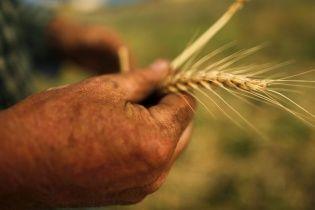 "Рада дала ""зеленый свет"" кредиту на 400 млн евро для аграриев"