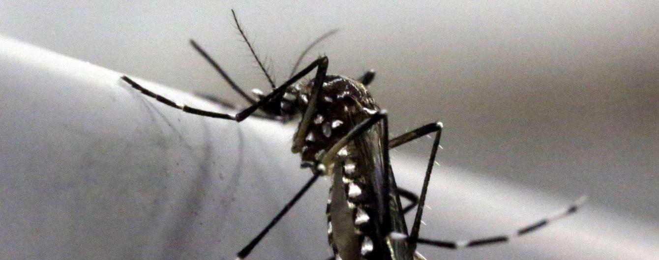 У МОЗ запевнили, що в Україні немає комарів-переносників вірусу Зіка