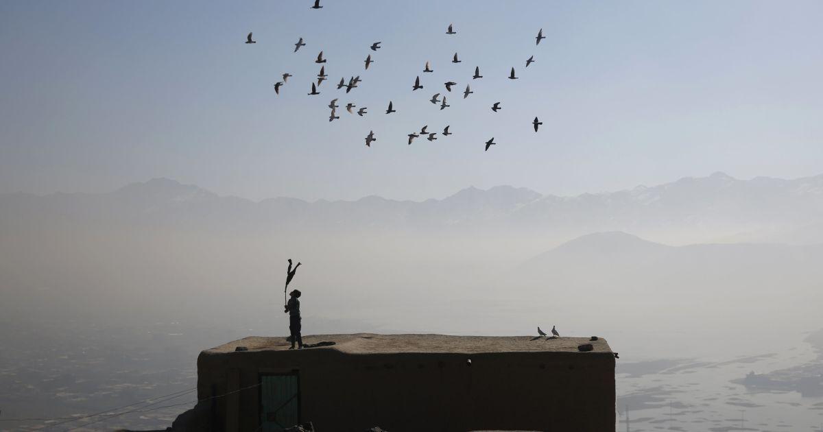 Афганський хлопчик махає палицею, поки літає зграя його одомашнених голубів, у Кабулі. @ Reuters