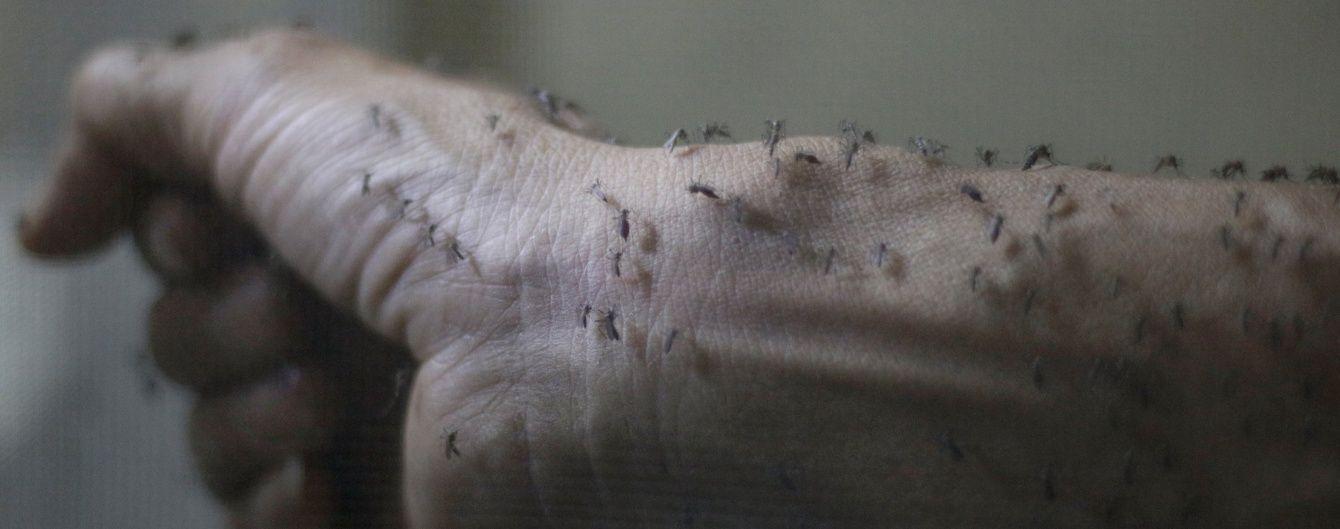 Білл Гейтс вклав мільйони в унікальних комарів-мутантів, які гинуть після сексу