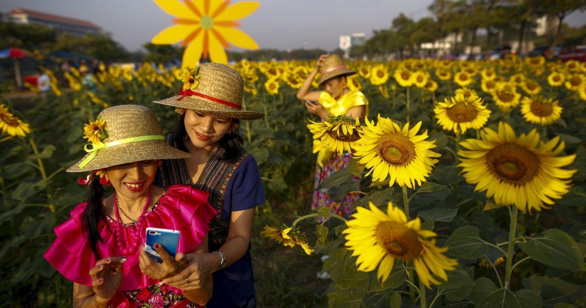 Дівчата роблять селфі на соняшниковому полі у Бангкоку, Таїланд. @ Reuters