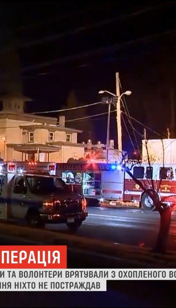 В США пожарные и волонтеры вынесли из горящего зоомагазина 86 собак