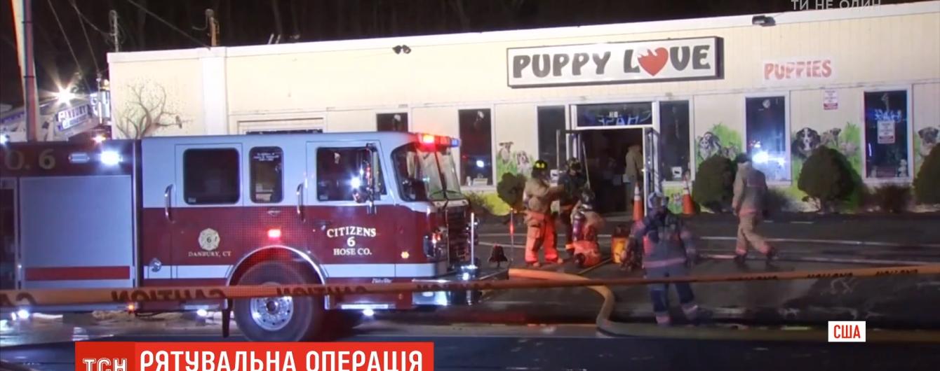 """""""Счастливое спасение"""". В США пожарные и волонтеры вынесли из охваченного пламенем зоомагазина 86 щенков"""