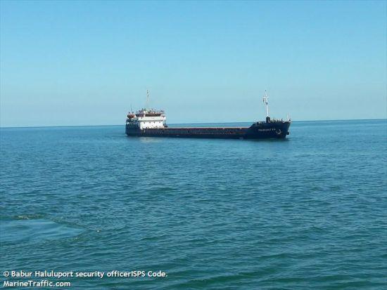 У посольстві розповіли, коли українські моряки із затонулого у Туреччині судна повернуться додому