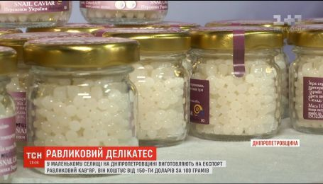 Равликовий кав'яр: у селищі на Дніпропетровщині виготовляють один з найдорожчих делікатесів у світі