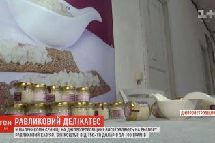 Равликовий кав'яр: виробництво одного із найдорожчих делікатесів налагодили у селі на Дніпропетровщині