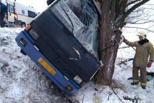 На Херсонщине автобус с пассажирами слетел с дороги и протаранил дерево