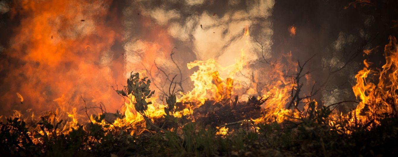 В РФ начались пожары из-за малоснежной зимы