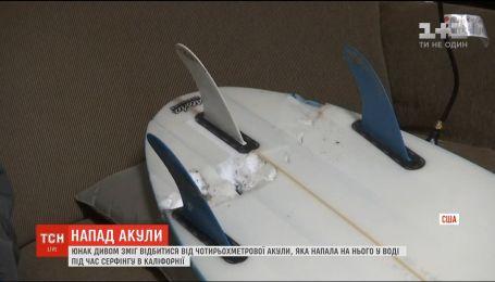 Каліфорнійському юнаку вдалося відбитися від чотириметрової акули