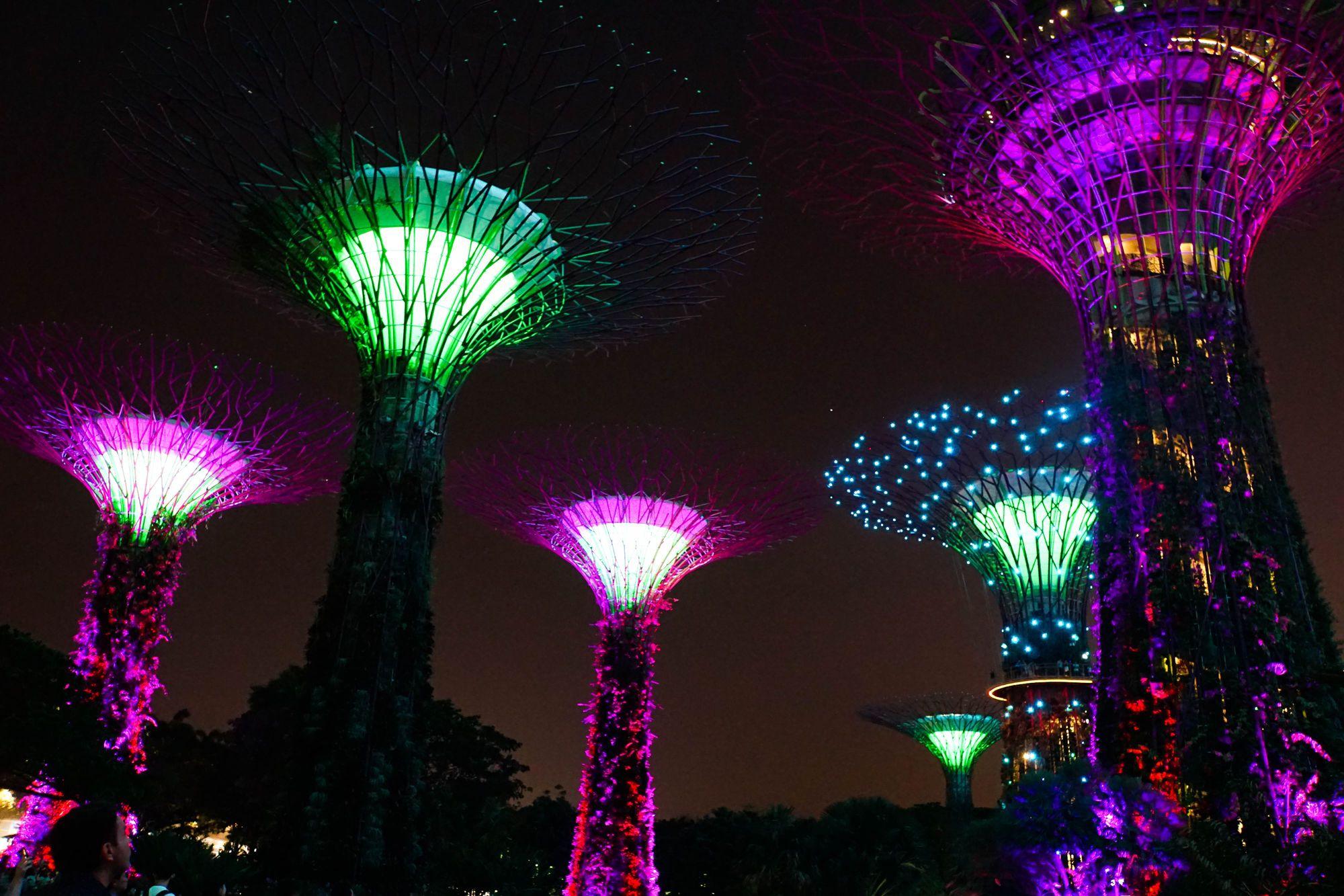 Bodo Travel, Малайзія, Сингапур, для блогів_1