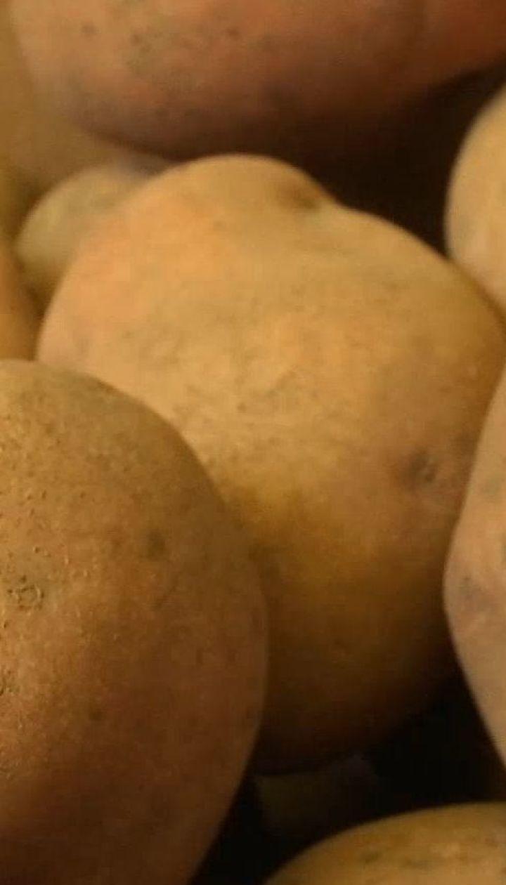 Чому і на скільки виросла в ціні картопля