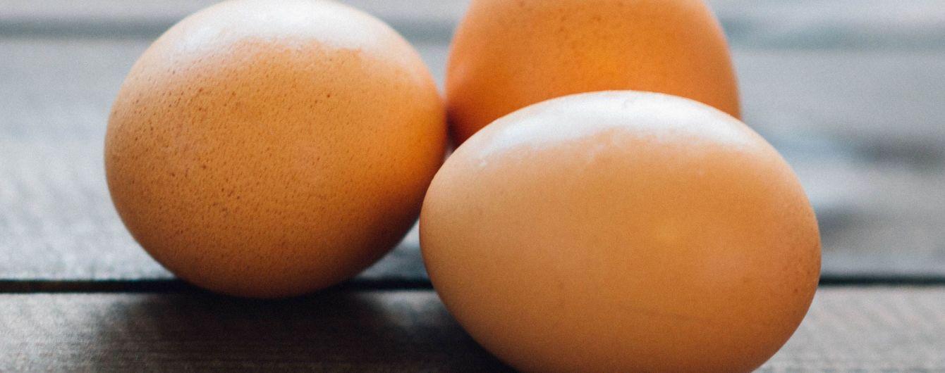 Нова зірка Instagram: звичайне куряче яйце зібрало максимальну кількість лайків