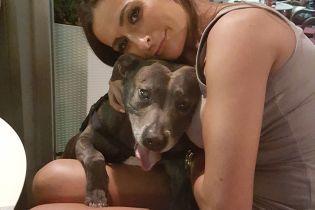 Американка влаштувала своєму улюбленому собаці помпезні похорони за 5 тисяч доларів