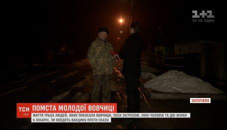 Нападение волчицы в Запорожье местные объяснили местью за убитого самца