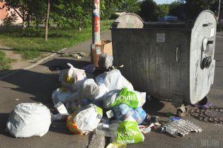 У Дніпрі вкрали сміттєві контейнери, щоб у них квасити капусту і солити кавуни