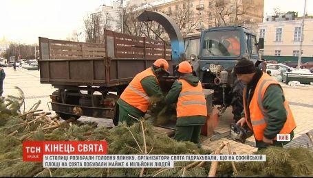 У Києві демонтували ялинку і підрахували скільки під нею з'їли тонн мяса