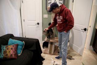 Красиво жити не заборониш: чоловік орендував квартиру для кішокза 1,5 тисячі доларів