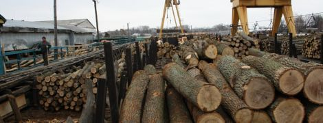 Евросоюз попросил Украину о консультациях относительно запрета экспорта кругляка