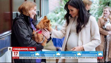ЗМІ розкритикували яскравий образ герцогині Сассекської для відвідин притулку для тварин