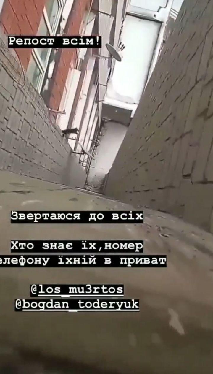 Во Львове двое подростков бросили котенка с многоэтажки