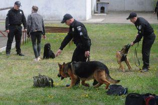 Українські аеропорти патрулюватимуть кінологи та наркоборці