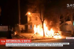 В Запорожье легковушка потеряла управление, врезалась в дерево и загорелась