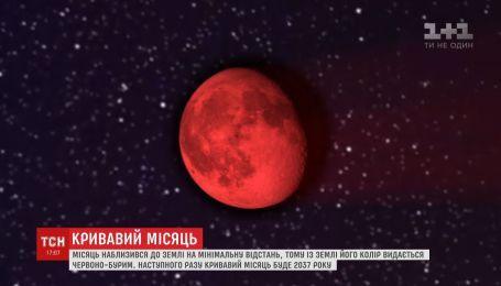 Луна приблизилась к Земле на минимальное расстояние и стала красно-бурой