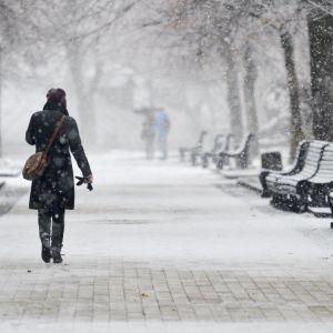 Синоптик рассказал, когда ждать похолодания и какой будет зима в Украине