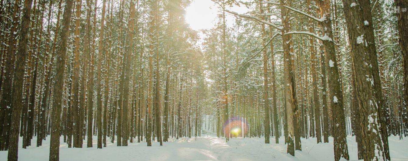 Весеннее тепло днем и морозы ночью. Погода в Украине на 16 февраля
