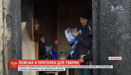 На Харьковщине сгорел частный приют для животных