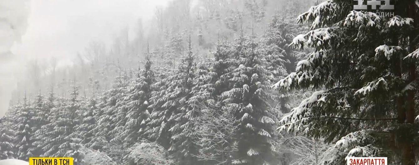 Желтый уровень опасности: зима возвращается в Украину с ураганами