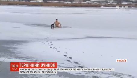 У Миколаєві морпіх врятував собаку, яка провалилася під кригу