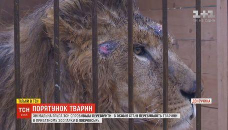 ТСН попыталась проверить, в каком состоянии находятся животные в зоопарке в Донецкой области