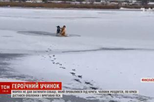 Морпех вытащил из-подо льда собаку в Николаеве