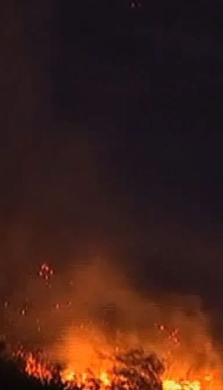 Лесные пожары охватили холмы Кейптауна в Южной Африке