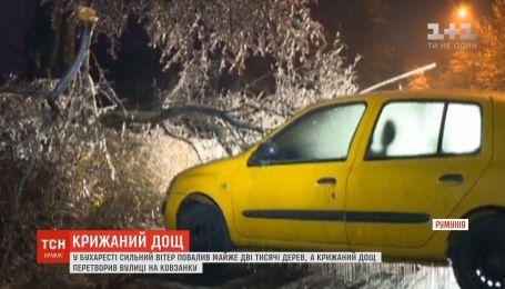 У Бухаресті сильний вітер повалив майже дві тисячі дерев