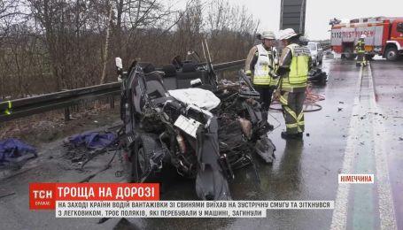 В Германии в аварии погибли три человека и 180 свиней