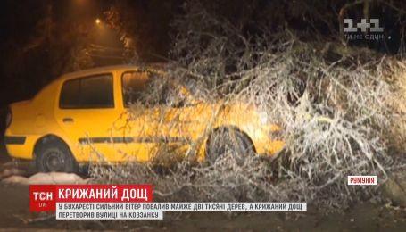 У Бухаресті зливи перетворили вулиці на ковзанку, а гілки дерев - на суцільні бурульки